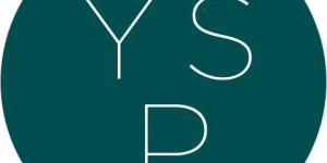 Young Sustainability Professionals